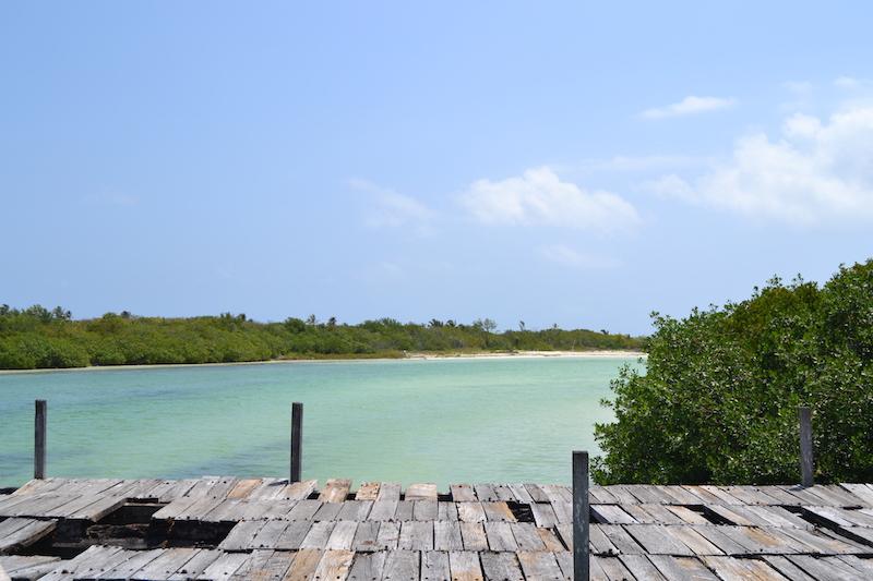 tulum-mangrove