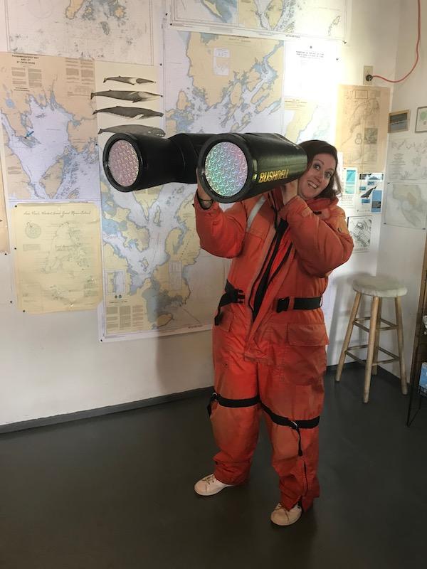 nouveau brunswick admirer baleines